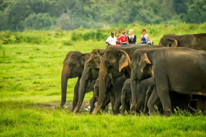 srilanka-wl